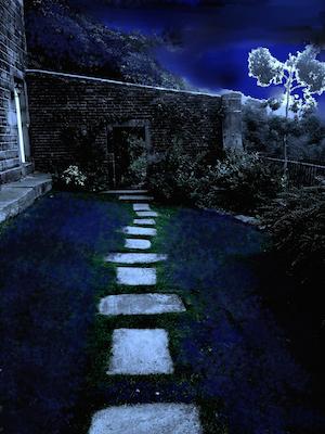 Path300