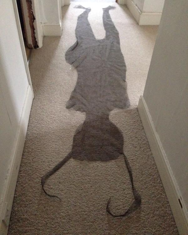 Indoor Shadow