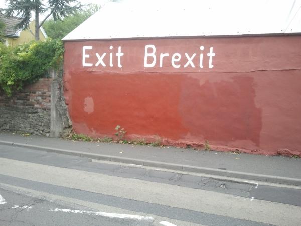 Garage wall featuring Exit Brexit slogan