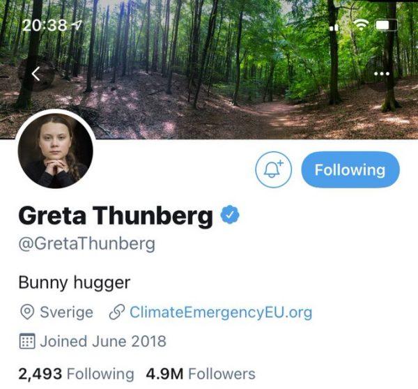 Screenshot of Greta Thunberg's Twitter bio, which now reads Bunny Hugger