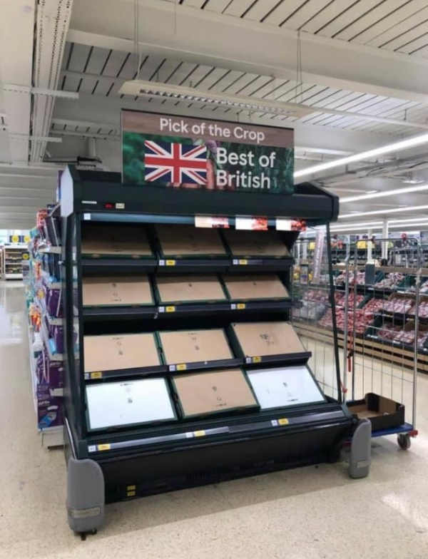 Photo of empty supermarket fruit and vegetable section over shelving headed Pick of the Crop and Best of British