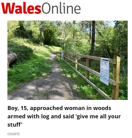Headline reads; Boy, 15, approached woman in woods armed with log and said 'give me all your stuff'