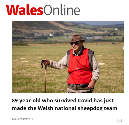 Headline reads: 89-year-old who caught Covid has just made the Welsh national sheepdog team